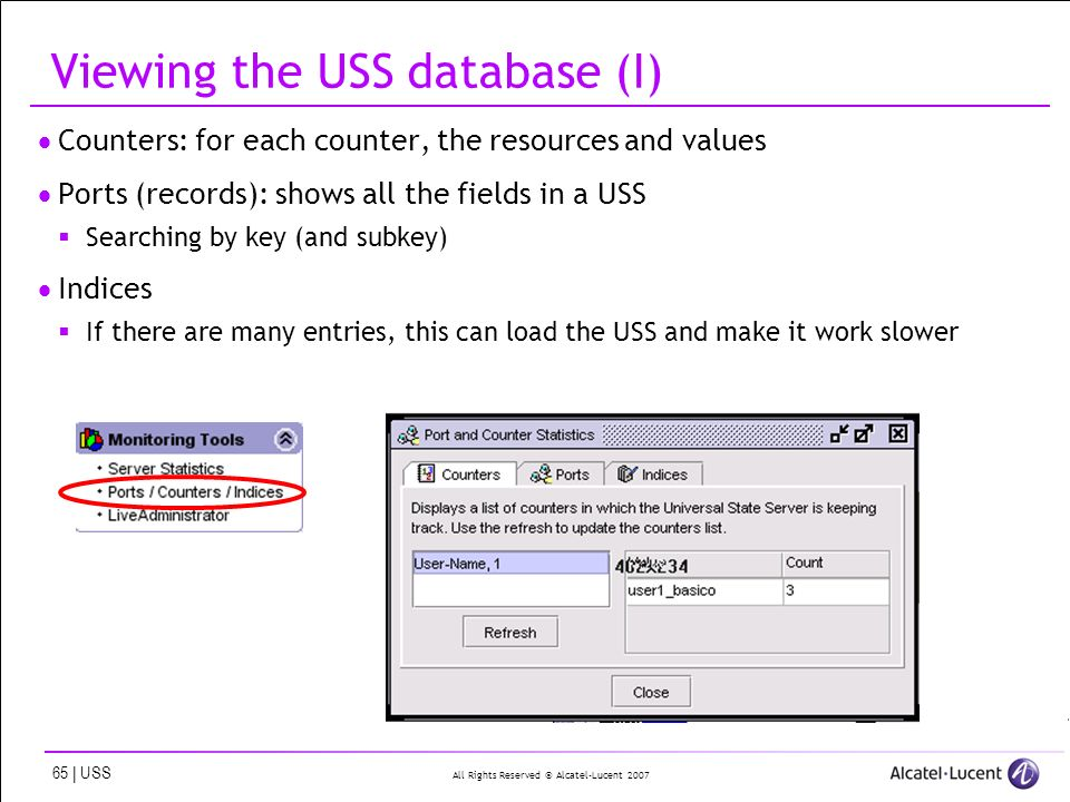 All Rights Reserved © Alcatel-Lucent 2007 65 | USS Viewing the USS database (I) Counters: for each counter, the resources and values Ports (records): shows all the fields in a USS Searching by key (and subkey) Indices If there are many entries, this can load the USS and make it work slower