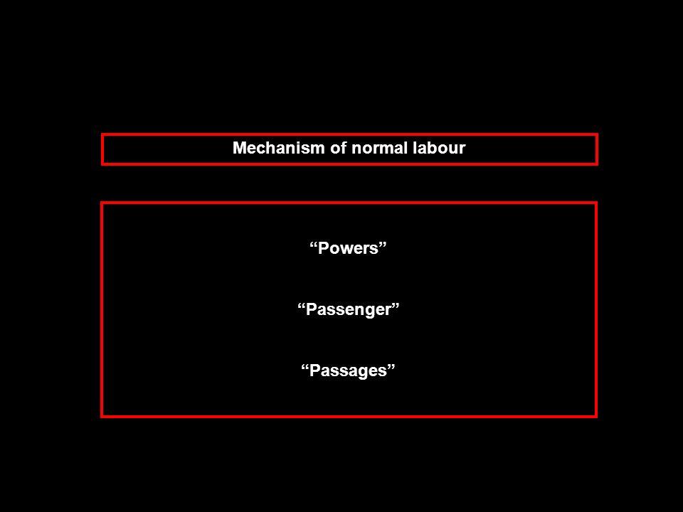 Powers Passenger Passages Mechanism of normal labour