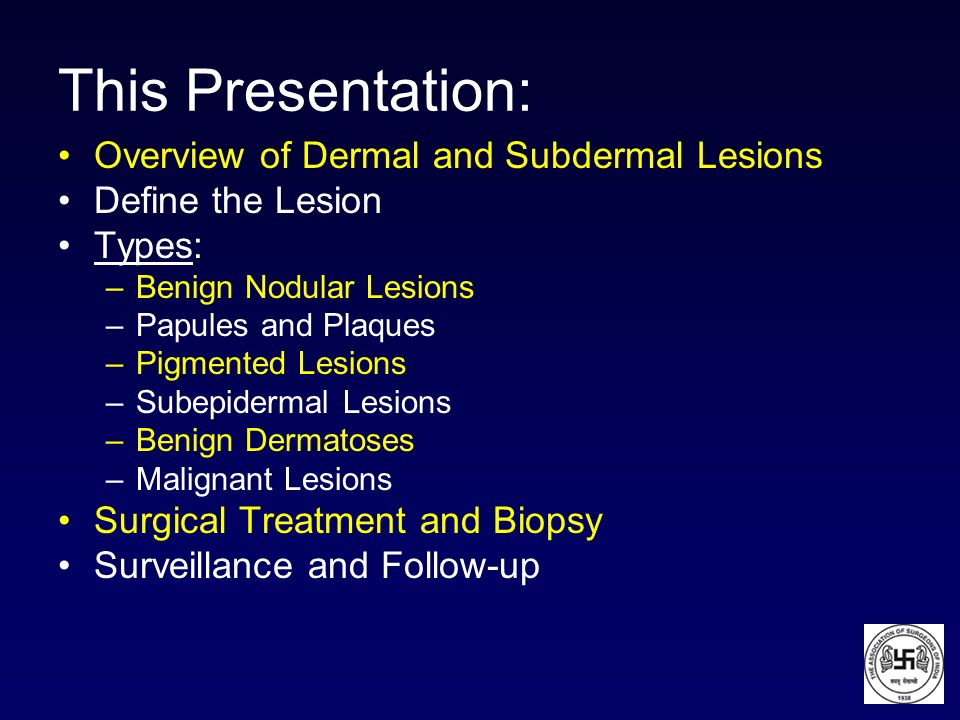 This Presentation: Overview of Dermal and Subdermal Lesions Define the Lesion Types: –Benign Nodular Lesions –Papules and Plaques –Pigmented Lesions –