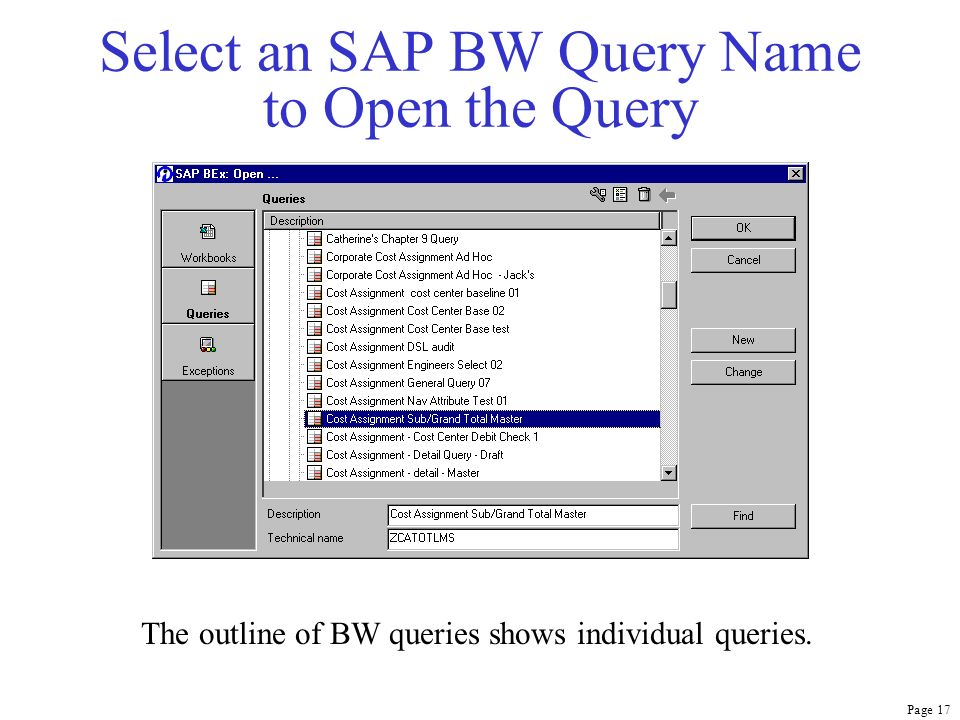 Page 17 Select an SAP BW Query Name to Open the Query The outline of BW queries shows individual queries.