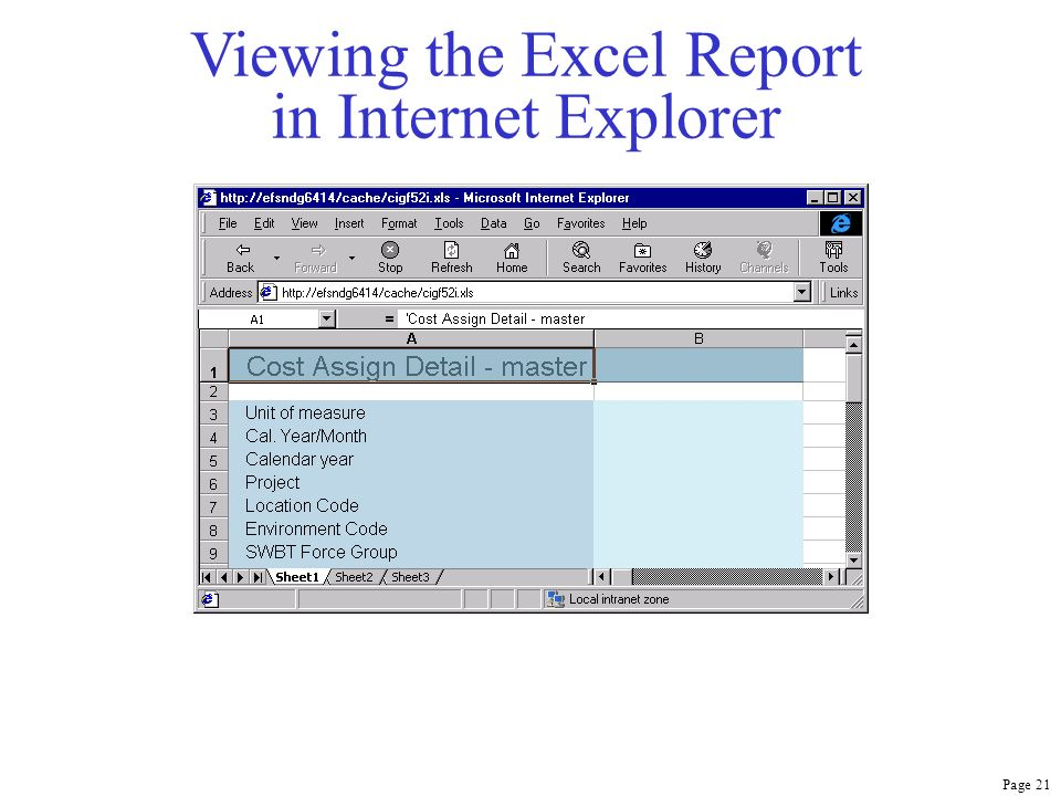 Page 21 Viewing the Excel Report in Internet Explorer