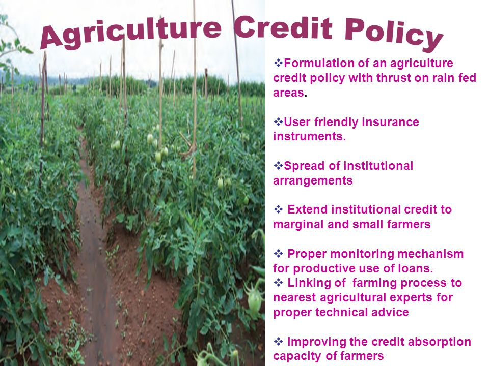 Formulation of an agriculture credit policy with thrust on rain fed areas.