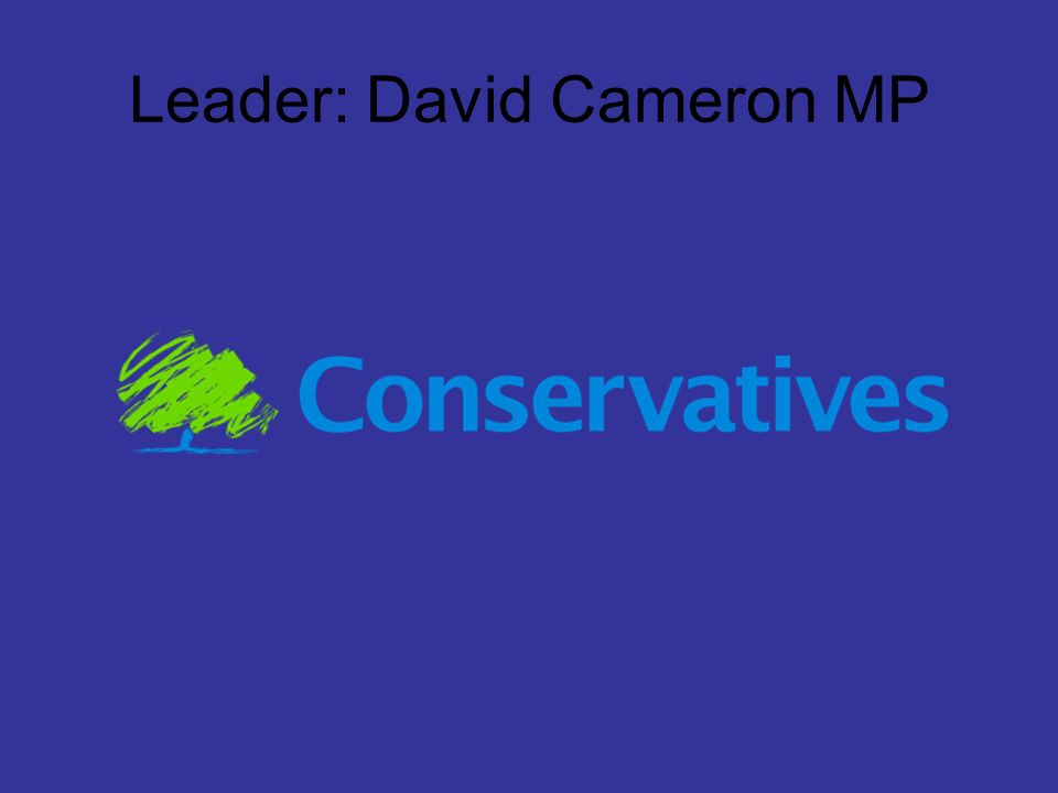 Leader: David Cameron MP