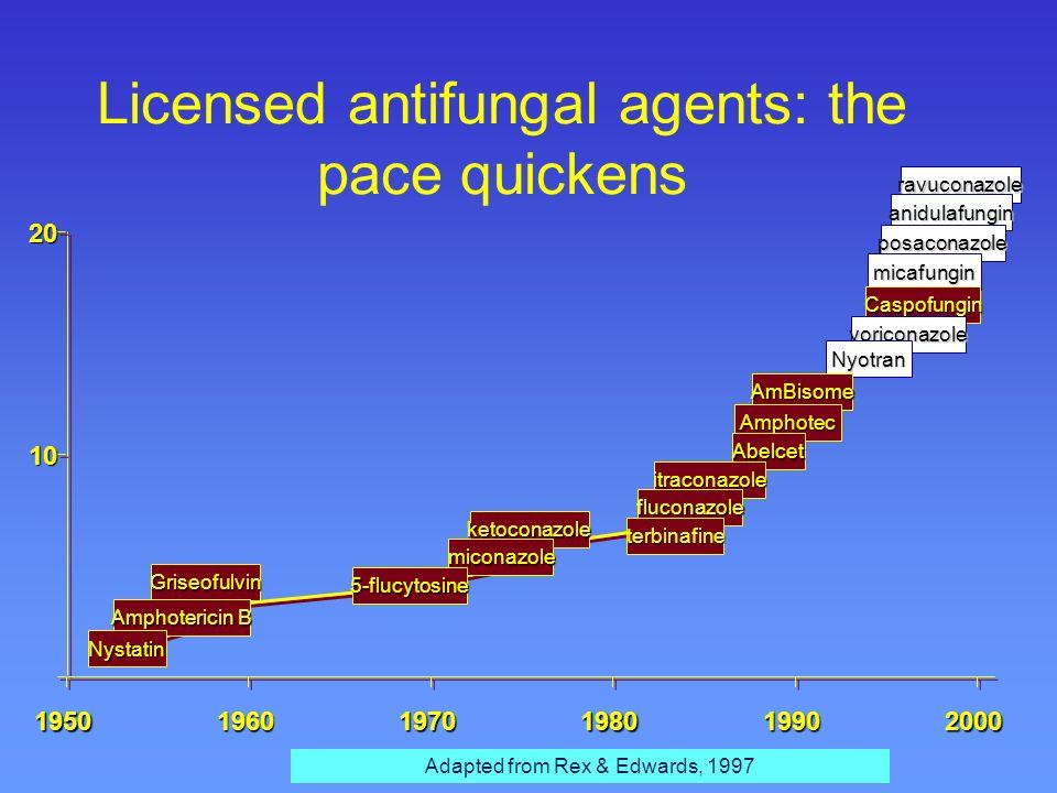 Mode of action of antifungals ergosterol polyenes eg amphotericin B polyenes azoles eg fluconazole azoles squalenes lanosterol K + Mg 2+ allylamines e