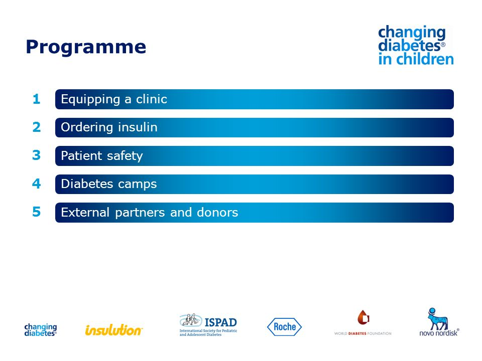 Programme 1 2 4 3 5 Equipping a clinic External partners and donors Diabetes camps Patient safety Ordering insulin