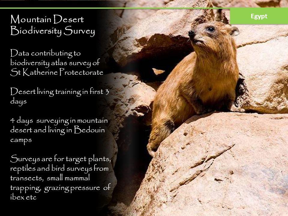 Mountain Desert Biodiversity Survey Data contributing to biodiversity atlas survey of St Katherine Protectorate Desert living training in first 3 days