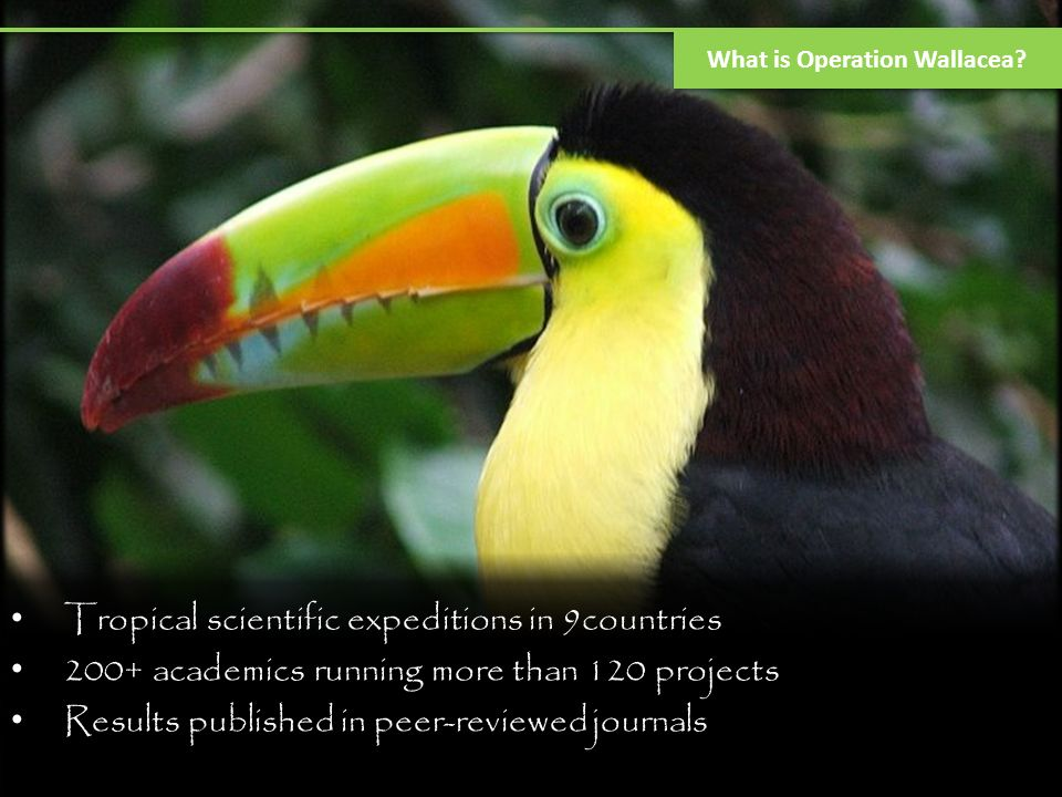Expedition medicine Expedition medicine experiential course (4weeks; jungle training, DNA, biodiversity monitoring, and dive training.