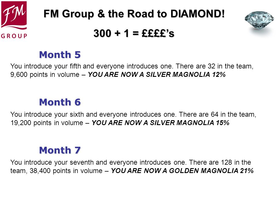 FM Group & the Road to DIAMOND! 300 + 1 = ££££s Month 5 Month 7 Month 6 You introduce your fifth and everyone introduces one. There are 32 in the team