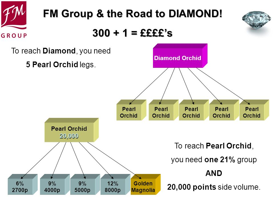 FM Group & the Road to DIAMOND! 300 + 1 = ££££s Pearl Orchid Pearl Orchid Diamond Orchid Pearl Orchid Pearl Orchid Pearl Orchid To reach Diamond, you