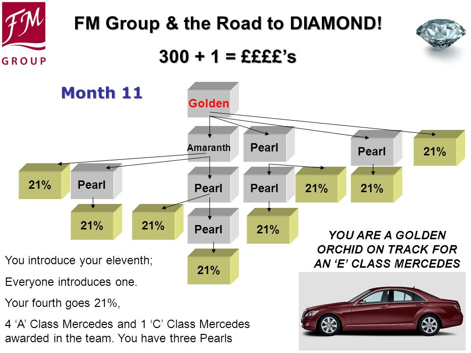 FM Group & the Road to DIAMOND! 300 + 1 = ££££s Golden Amaranth Pearl 21% Month 11 You introduce your eleventh; Everyone introduces one. Your fourth g