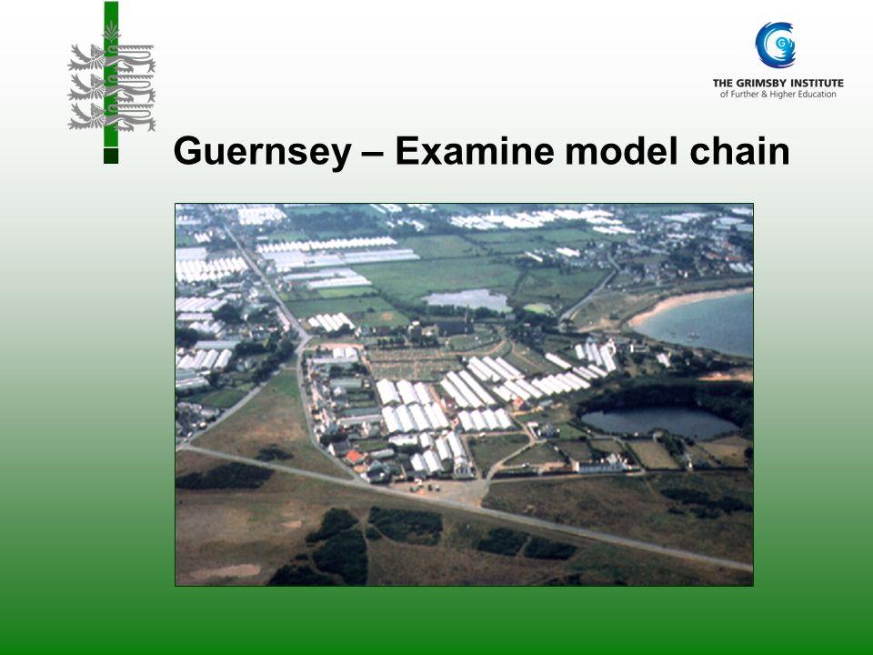 Guernsey – Examine model chain