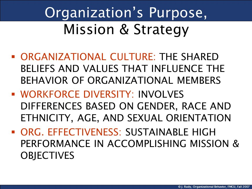 © J. Rudy, Organizational Behavior, FMCU, Fall 2007 Organizations Purpose, Mission & Strategy ORGANIZATIONAL CULTURE: THE SHARED BELIEFS AND VALUES TH