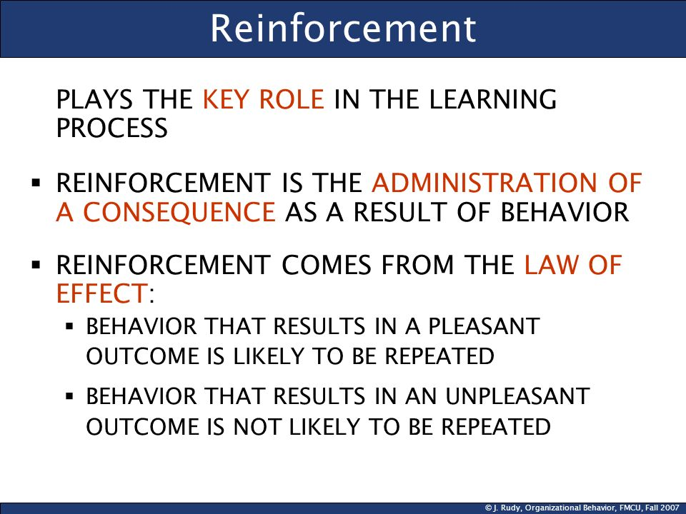 © J. Rudy, Organizational Behavior, FMCU, Fall 2007 Reinforcement PLAYS THE KEY ROLE IN THE LEARNING PROCESS REINFORCEMENT IS THE ADMINISTRATION OF A