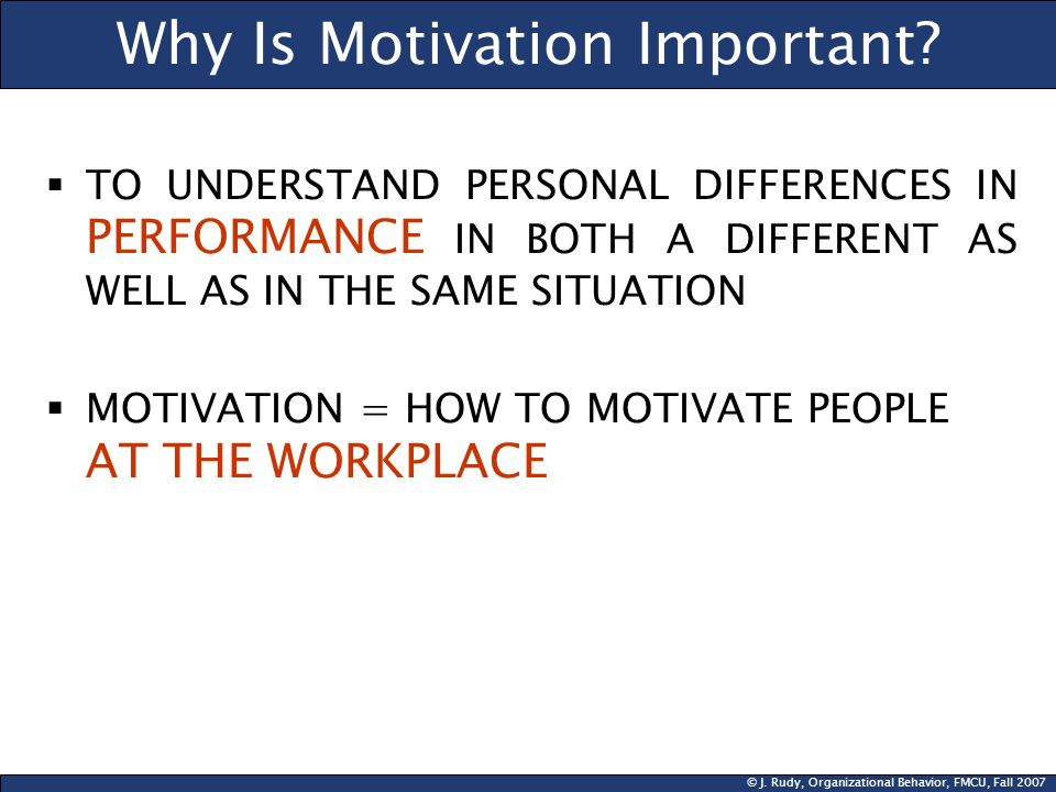 © J. Rudy, Organizational Behavior, FMCU, Fall 2007 Why Is Motivation Important? TO UNDERSTAND PERSONAL DIFFERENCES IN PERFORMANCE IN BOTH A DIFFERENT