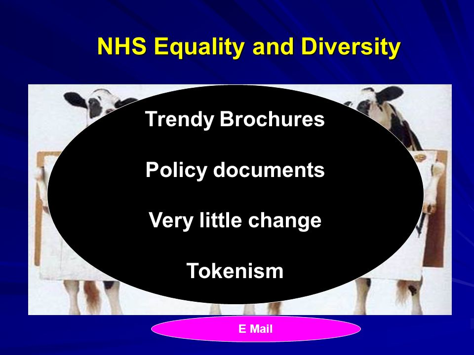 NHS Equality and Diversity Trendy Brochures Policy documents Very little change Tokenism E Mail