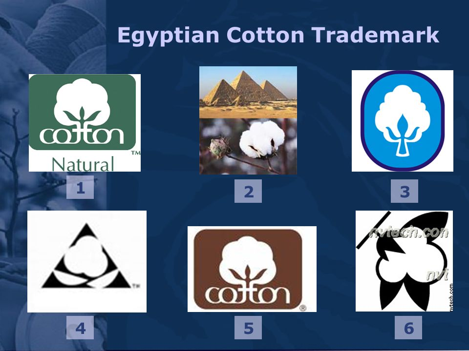Egyptian Cotton Trademark 1 23 654