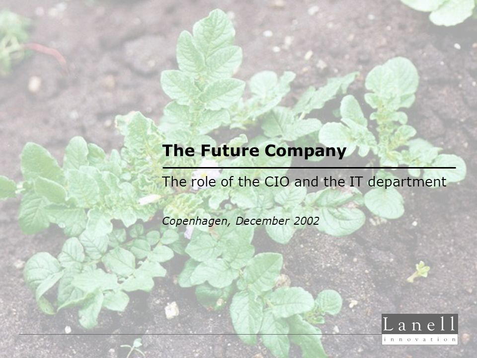 The Future Company The role of the CIO and the IT department Copenhagen, December 2002