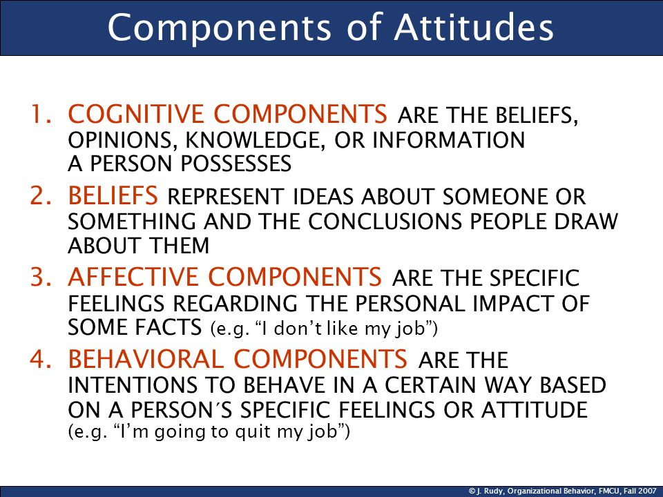 © J. Rudy, Organizational Behavior, FMCU, Fall 2007 Components of Attitudes 1.COGNITIVE COMPONENTS ARE THE BELIEFS, OPINIONS, KNOWLEDGE, OR INFORMATIO