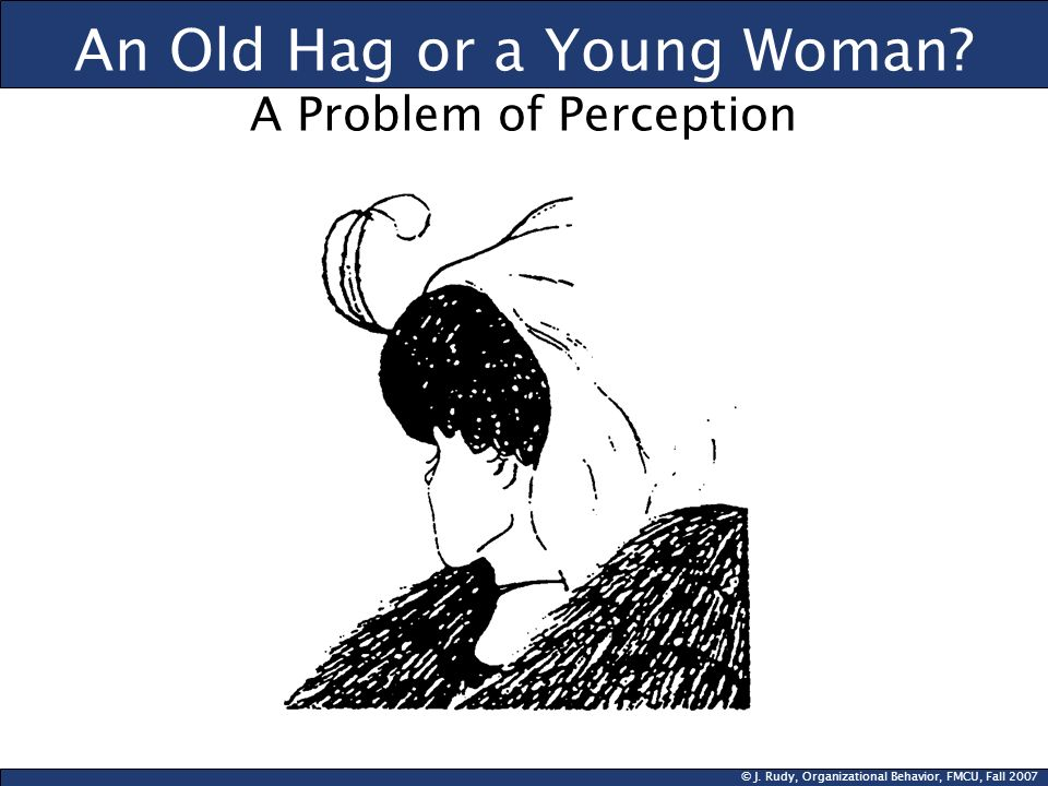 © J. Rudy, Organizational Behavior, FMCU, Fall 2007 An Old Hag or a Young Woman? A Problem of Perception