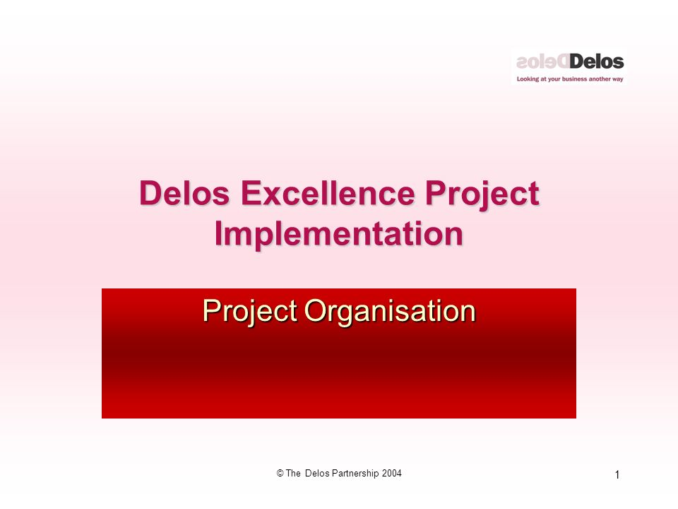 1 © The Delos Partnership 2004 Delos Excellence Project Implementation Project Organisation