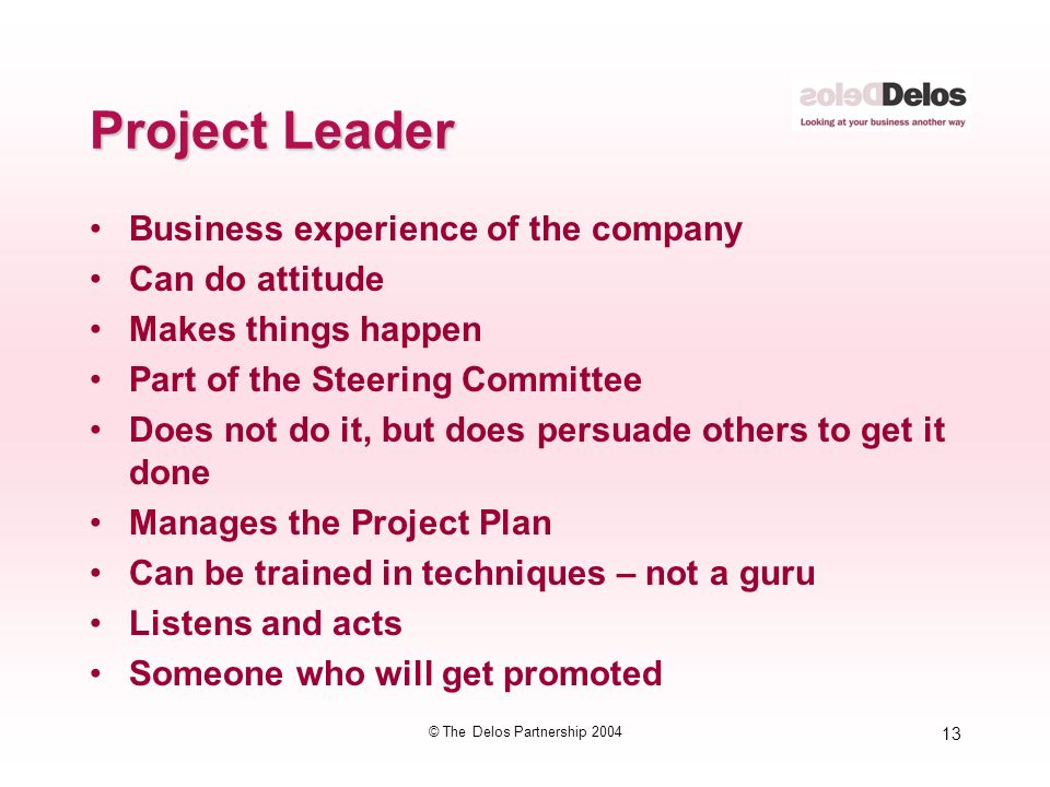 13 © The Delos Partnership 2004 Project Leader Business experience of the company Can do attitude Makes things happen Part of the Steering Committee Does not do it, but does persuade others to get it done Manages the Project Plan Can be trained in techniques – not a guru Listens and acts Someone who will get promoted