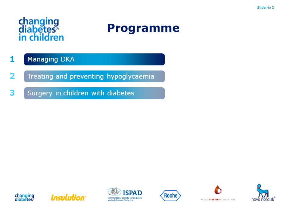 Slide No 2Slide no 2 1 2 3 Managing DKA Surgery in children with diabetes Treating and preventing hypoglycaemia Programme