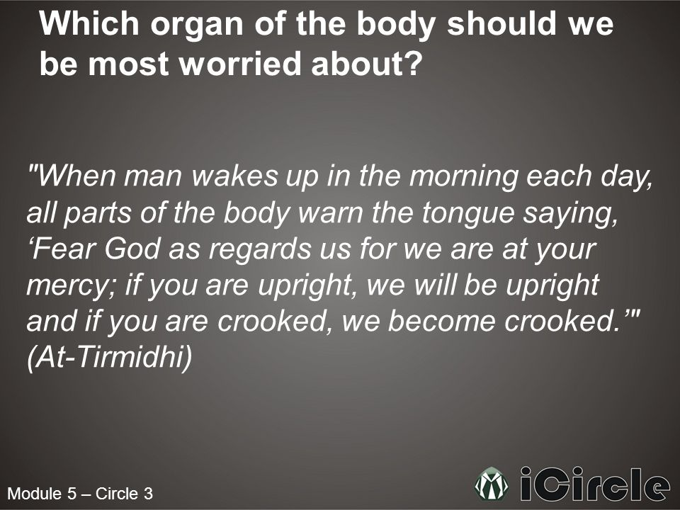 Module 5 – Circle 3 Which organ of the body should we be most worried about?