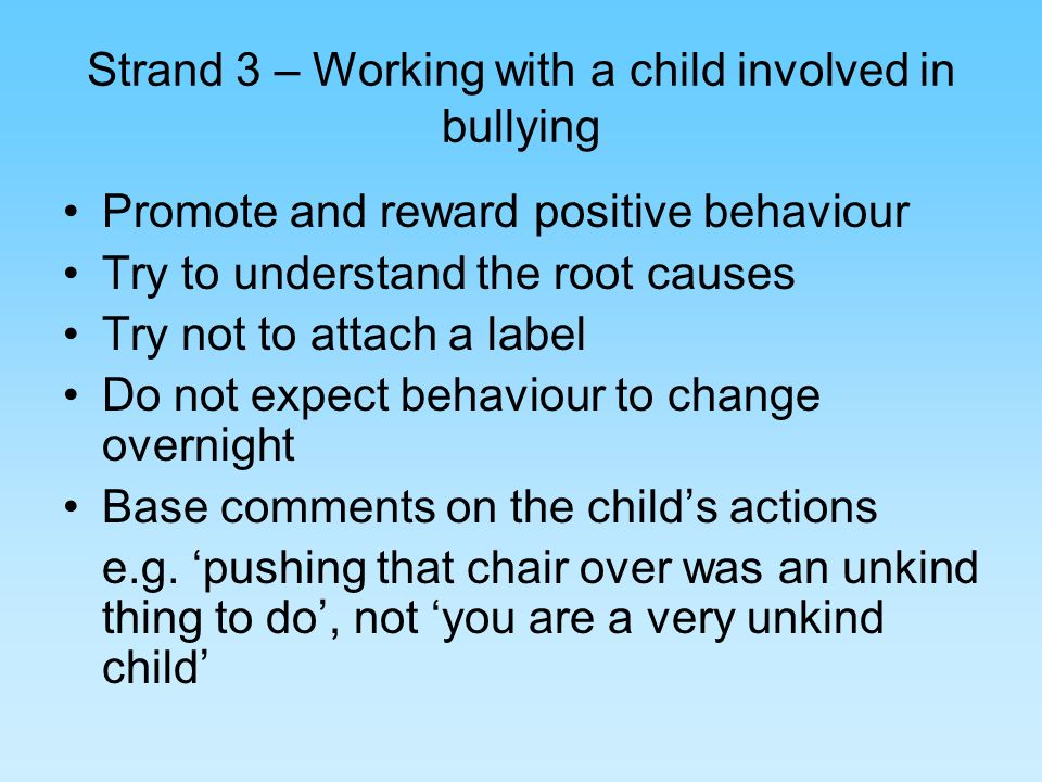 Strand 3 – Working with a child involved in bullying Promote and reward positive behaviour Try to understand the root causes Try not to attach a label Do not expect behaviour to change overnight Base comments on the childs actions e.g.