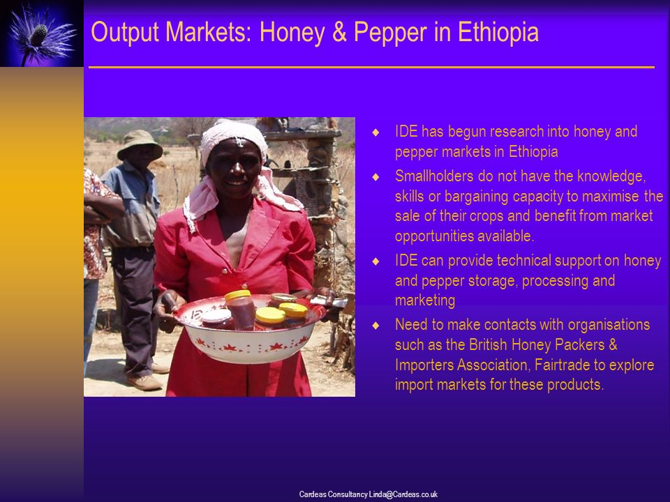 Cardeas Consultancy Linda@Cardeas.co.uk Output Markets: Honey & Pepper in Ethiopia IDE has begun research into honey and pepper markets in Ethiopia Smallholders do not have the knowledge, skills or bargaining capacity to maximise the sale of their crops and benefit from market opportunities available.