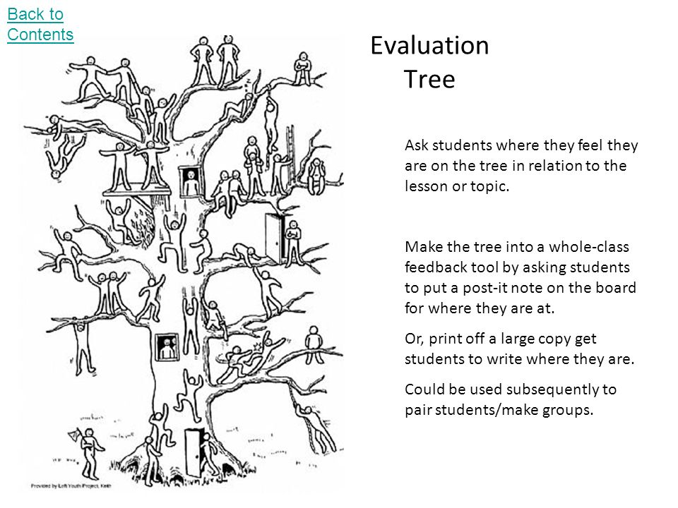 Evaluation Tree Ask students where they feel they are on the tree in relation to the lesson or topic.