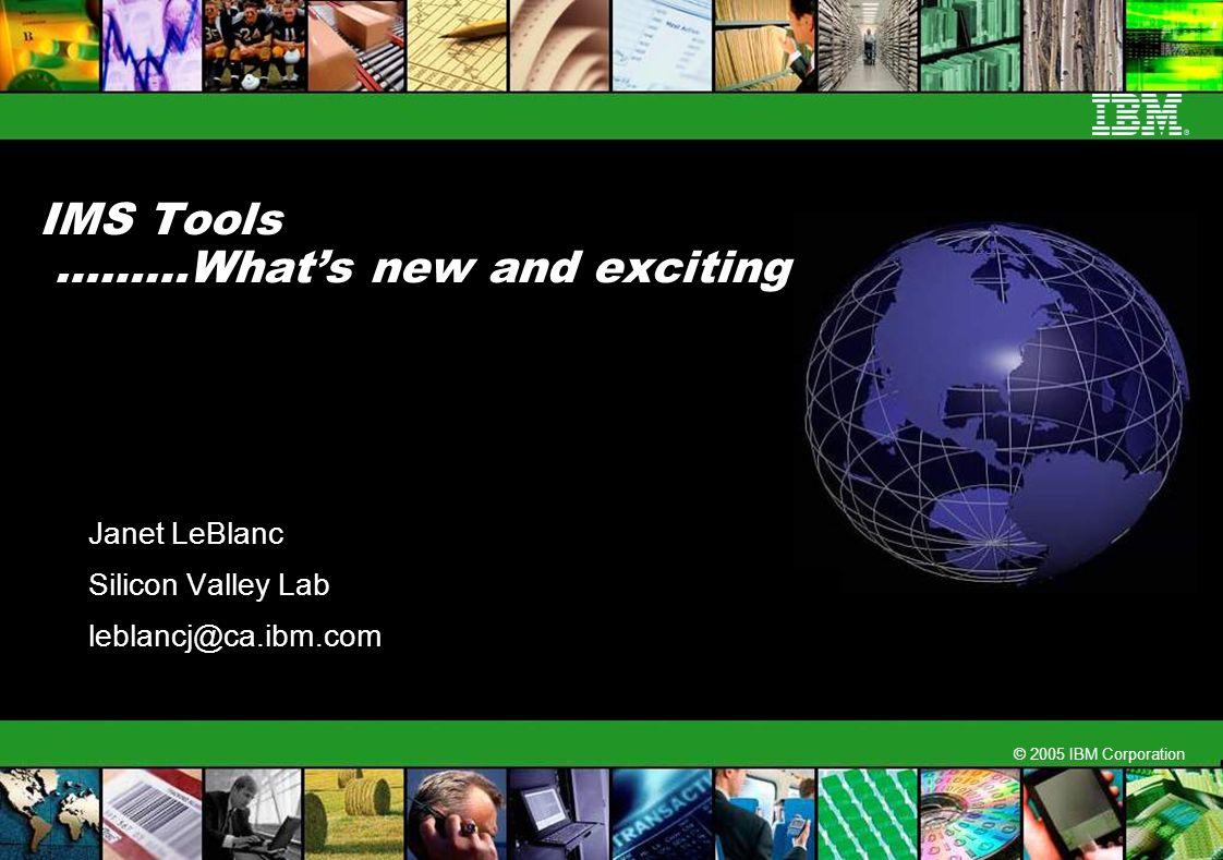 © 2005 IBM Corporation IMS Tools ………Whats new and exciting Janet LeBlanc Silicon Valley Lab leblancj@ca.ibm.com