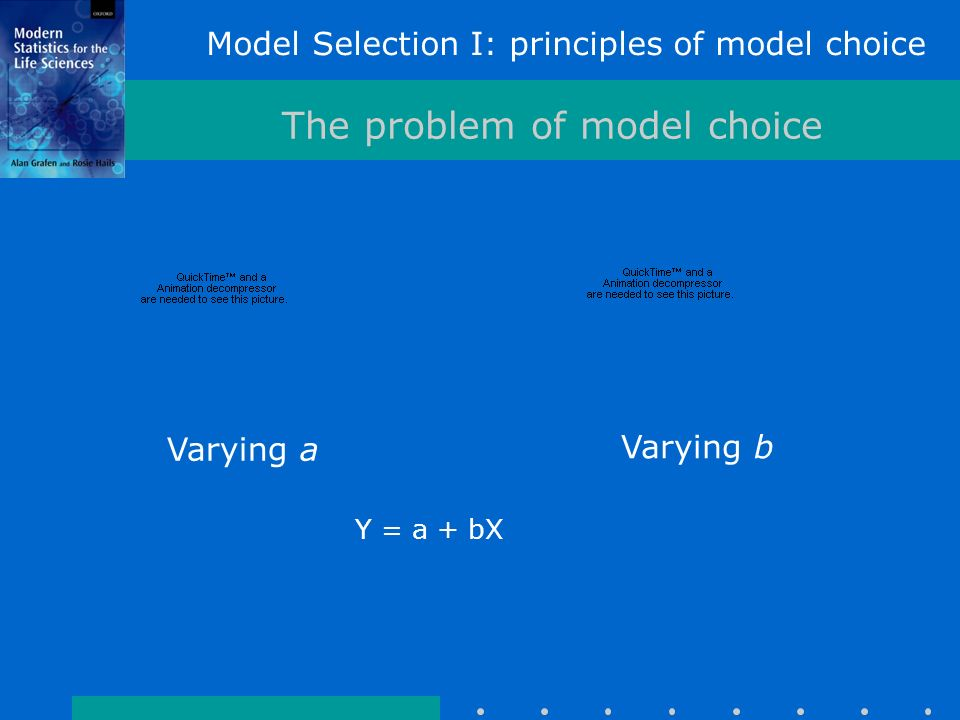 Model Selection I: principles of model choice The problem of model choice Varying a Varying b Y = a + bX
