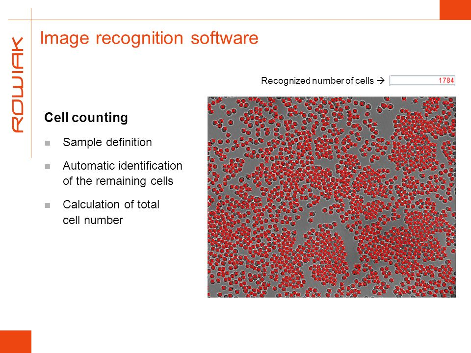Image recognition software Cell counting Sample definition Automatic identification of the remaining cells Calculation of total cell number Recognized