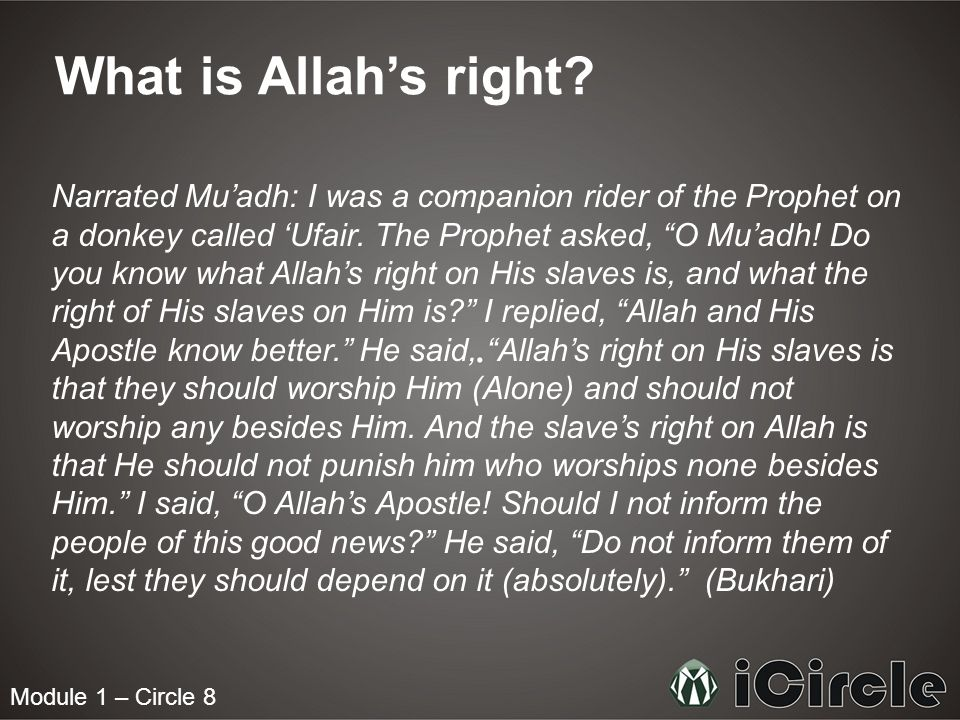 Module 1 – Circle 8 What is Allahs right? Narrated Muadh: I was a companion rider of the Prophet on a donkey called Ufair. The Prophet asked, O Muadh!