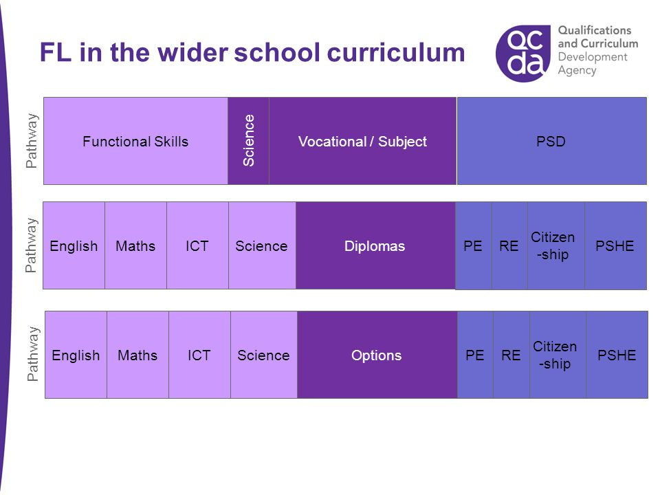 FL in the wider school curriculum EnglishMathsICTScienceOptionsPSHE Citizen -ship REPE Pathway EnglishMathsICTScienceDiplomasPSHE Citizen -ship REPE Pathway Functional SkillsVocational / SubjectPSD Pathway Science