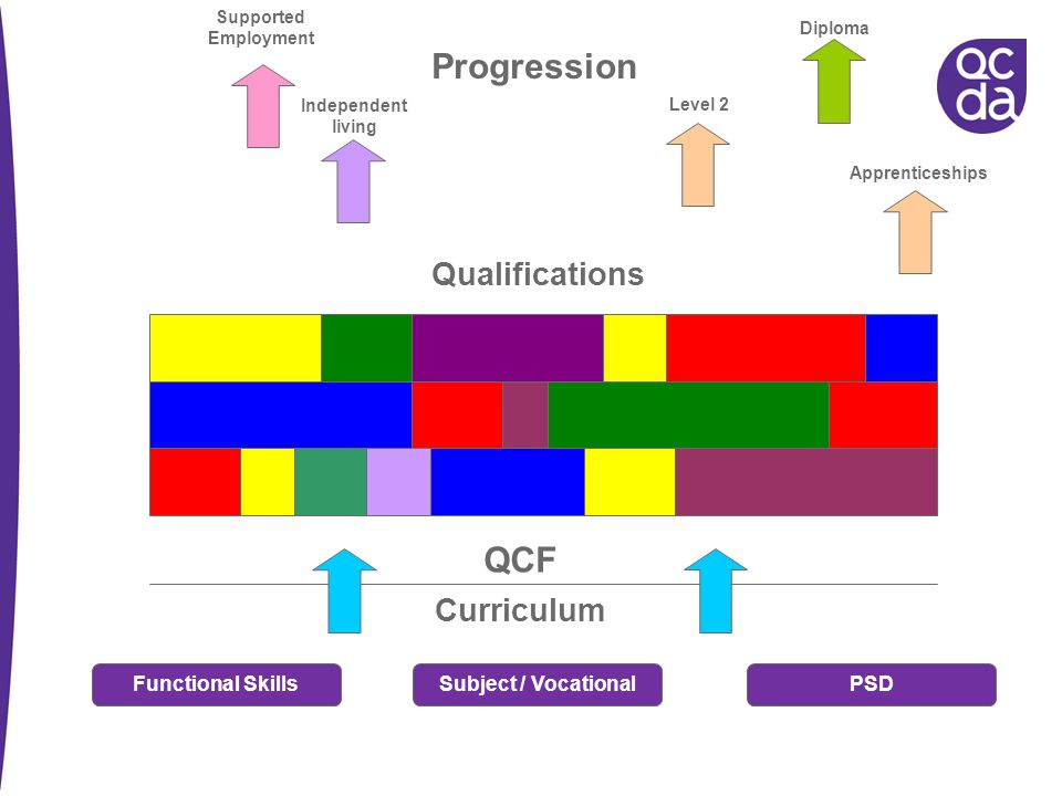 Curriculum QCF Qualifications Progression Diploma Level 2 Independent living Supported Employment Functional SkillsSubject / VocationalPSD Apprentices