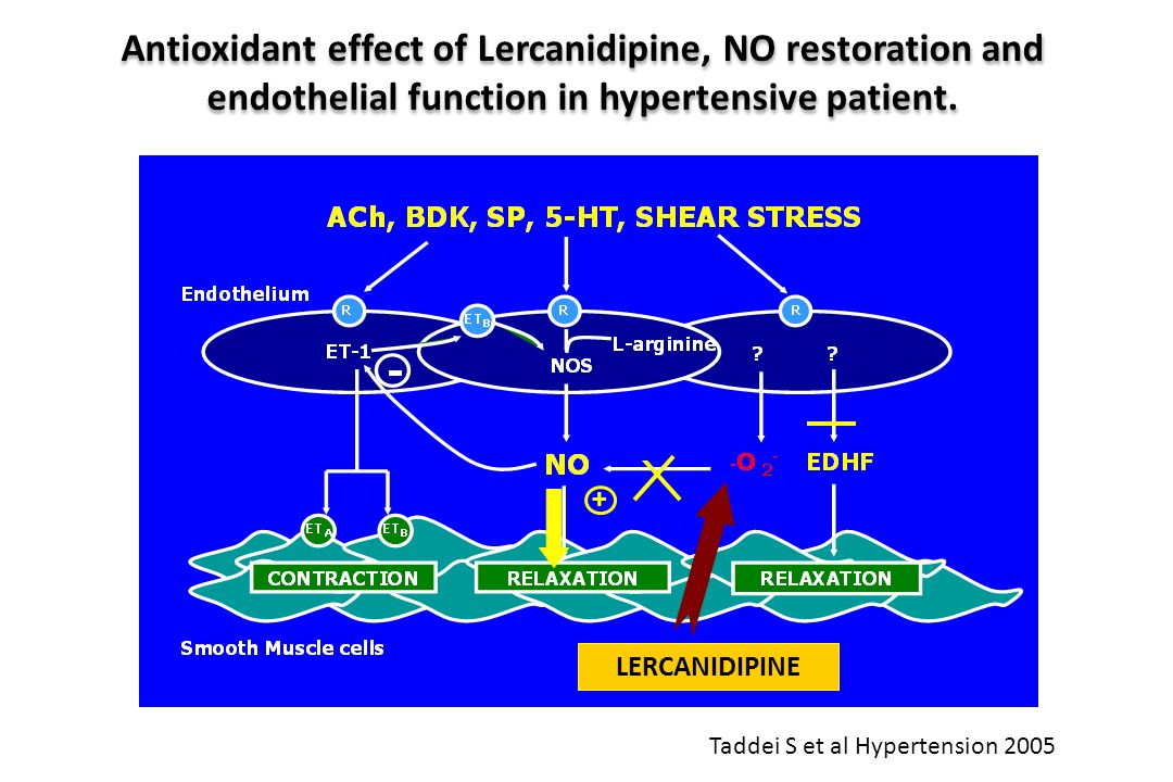 Antioxidant effect of Lercanidipine, NO restoration and endothelial function in hypertensive patient. LERCANIDIPINE + Taddei S et al Hypertension 2005