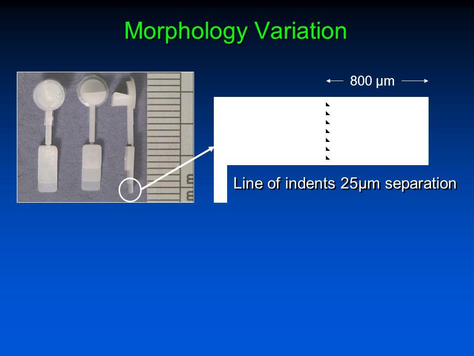 Morphology Variation Line of indents 25µm separation 800 µm