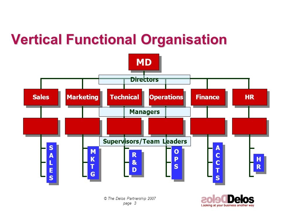 © The Delos Partnership 2007 page 3 Vertical Functional Organisation MD Sales Marketing Technical Operations Finance HR R&DR&D R&DR&D MKTGMKTG MKTGMKTG SALESSALES SALESSALES OPSOPS OPSOPS ACCTSACCTS ACCTSACCTS HRHR HRHR Directors Managers Supervisors/Team Leaders