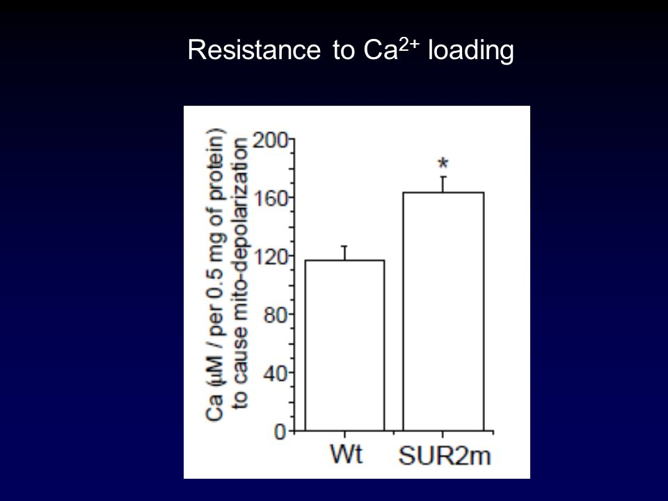 Resistance to Ca 2+ loading