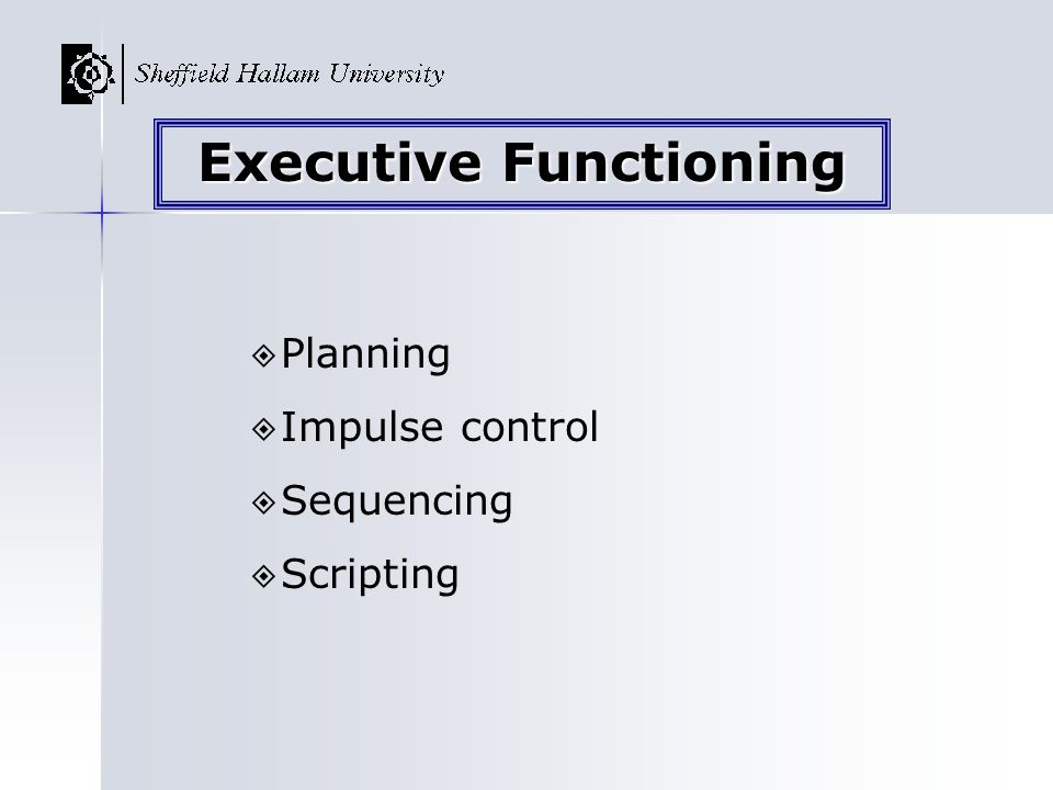 Planning Impulse control Sequencing Scripting Executive Functioning