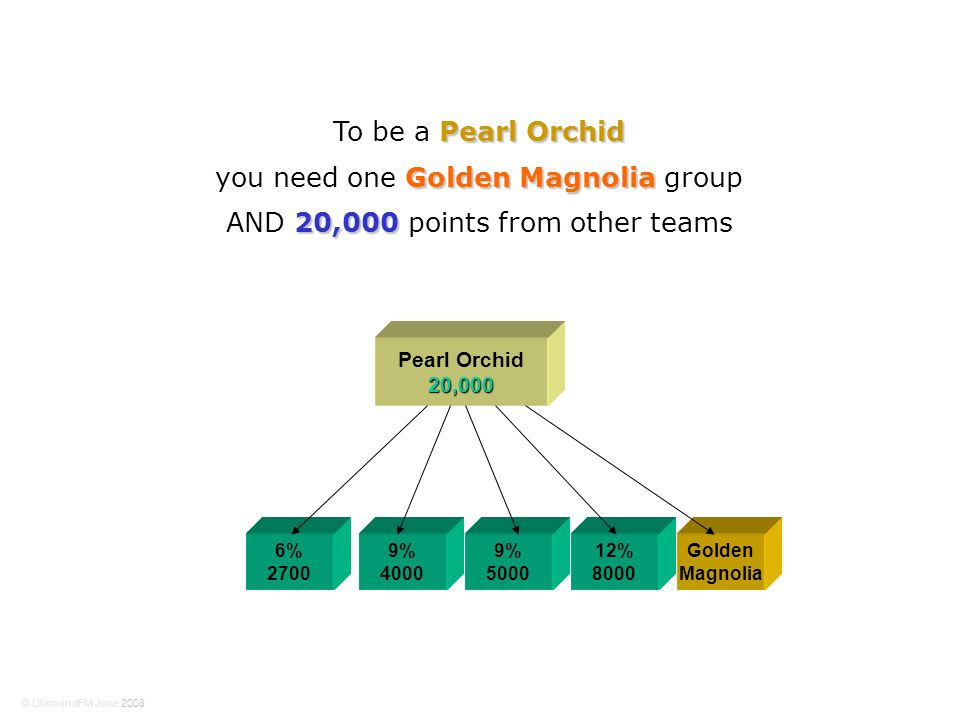 6% 2700 9% 4000 Pearl Orchid20,000 9% 5000 12% 8000 Golden Magnolia Pearl Orchid To be a Pearl Orchid Golden Magnolia you need one Golden Magnolia group 20,000 AND 20,000 points from other teams © DiamondFM June 2008