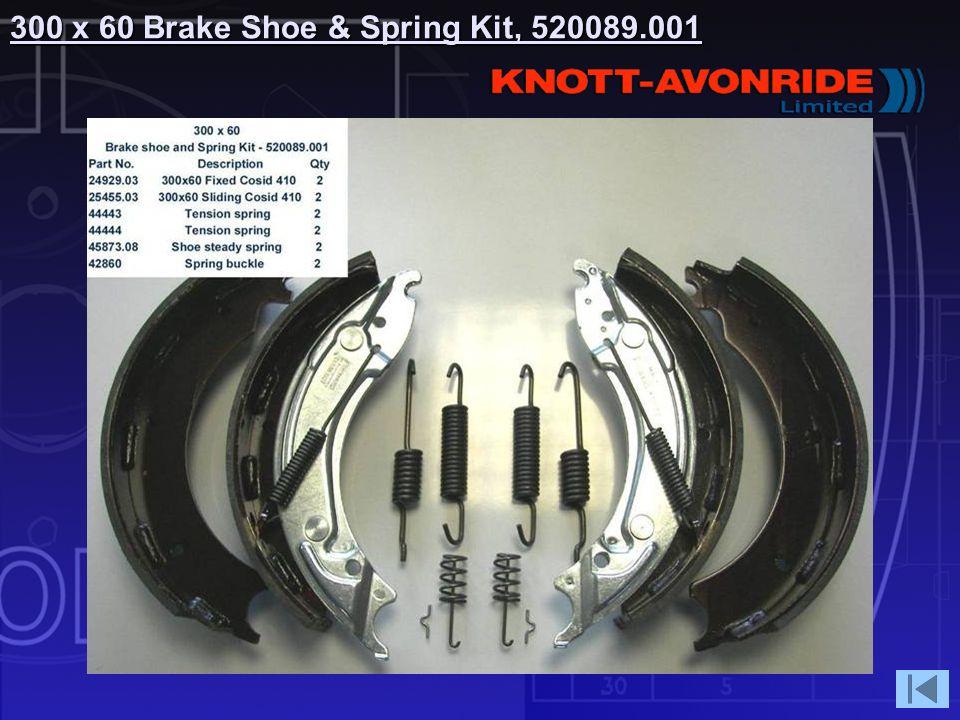 300 x 60 Brake Shoe & Spring Kit, 520089.001