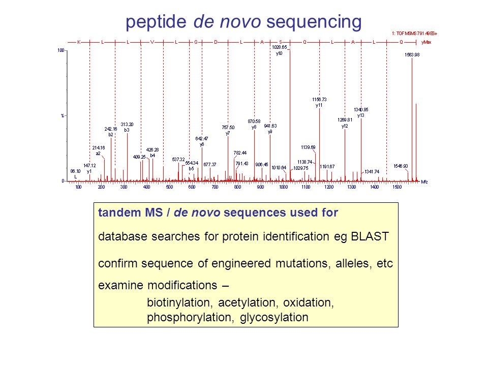 tandem MS / de novo sequences used for database searches for protein identification eg BLAST confirm sequence of engineered mutations, alleles, etc ex