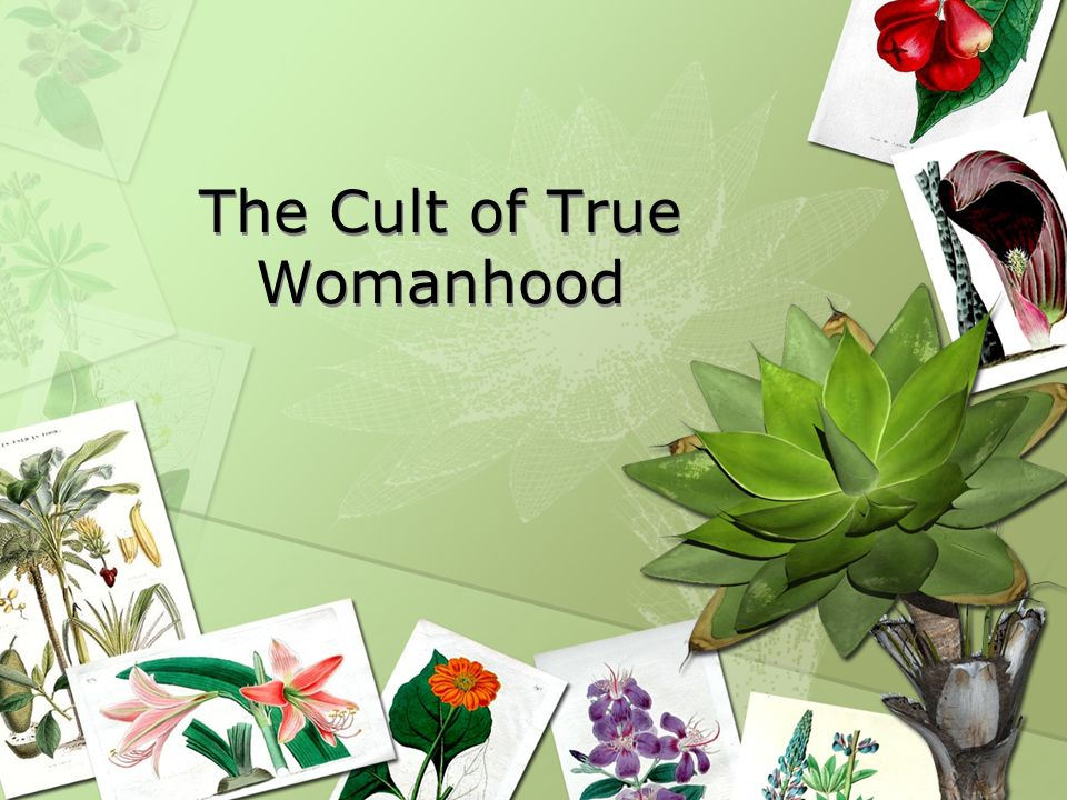 The Cult of True Womanhood