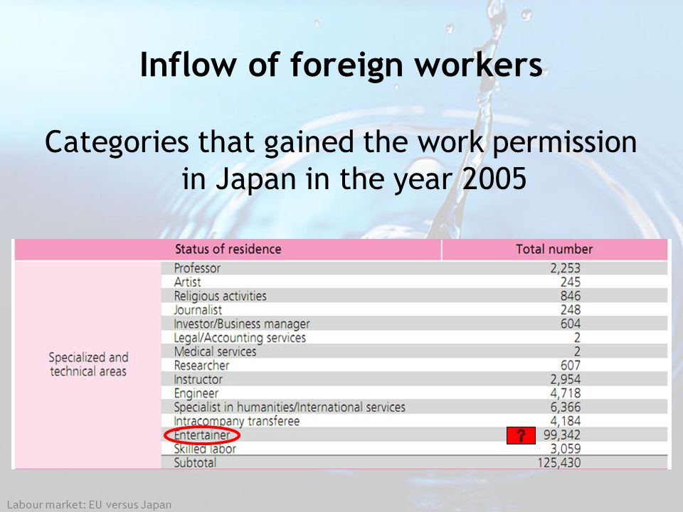 Labour market: EU versus Japan Inflow of foreign workers Categories that gained the work permission in Japan in the year 2005