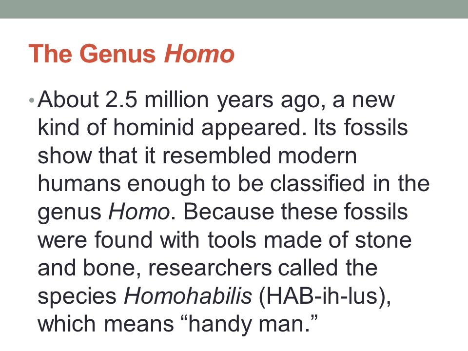The Genus Homo About 2.5 million years ago, a new kind of hominid appeared. Its fossils show that it resembled modern humans enough to be classified i