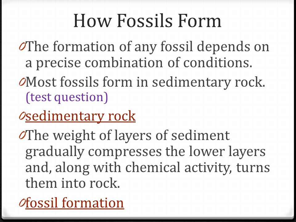 How Fossils Form 0 The formation of any fossil depends on a precise combination of conditions. 0 Most fossils form in sedimentary rock. (test question