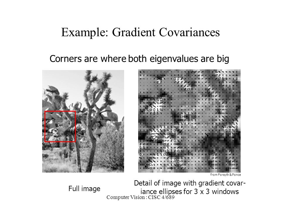 Computer Vision : CISC 4/689 Example: Gradient Covariances Full image Detail of image with gradient covar- iance ellipses for 3 x 3 windows from Forsy