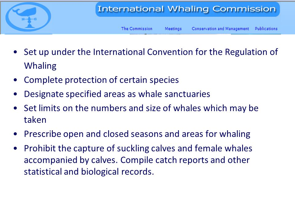 Set up under the International Convention for the Regulation of Whaling Complete protection of certain species Designate specified areas as whale sanctuaries Set limits on the numbers and size of whales which may be taken Prescribe open and closed seasons and areas for whaling Prohibit the capture of suckling calves and female whales accompanied by calves.